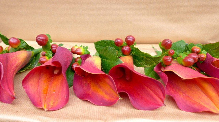 Buttonholes of mango calla lilies and hypericum berries