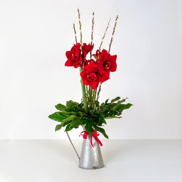 Red Amaryllis Jug